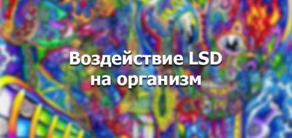 Как ЛСД действует на организм